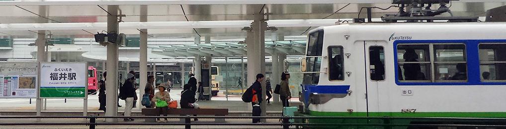 福井駅前を彩る